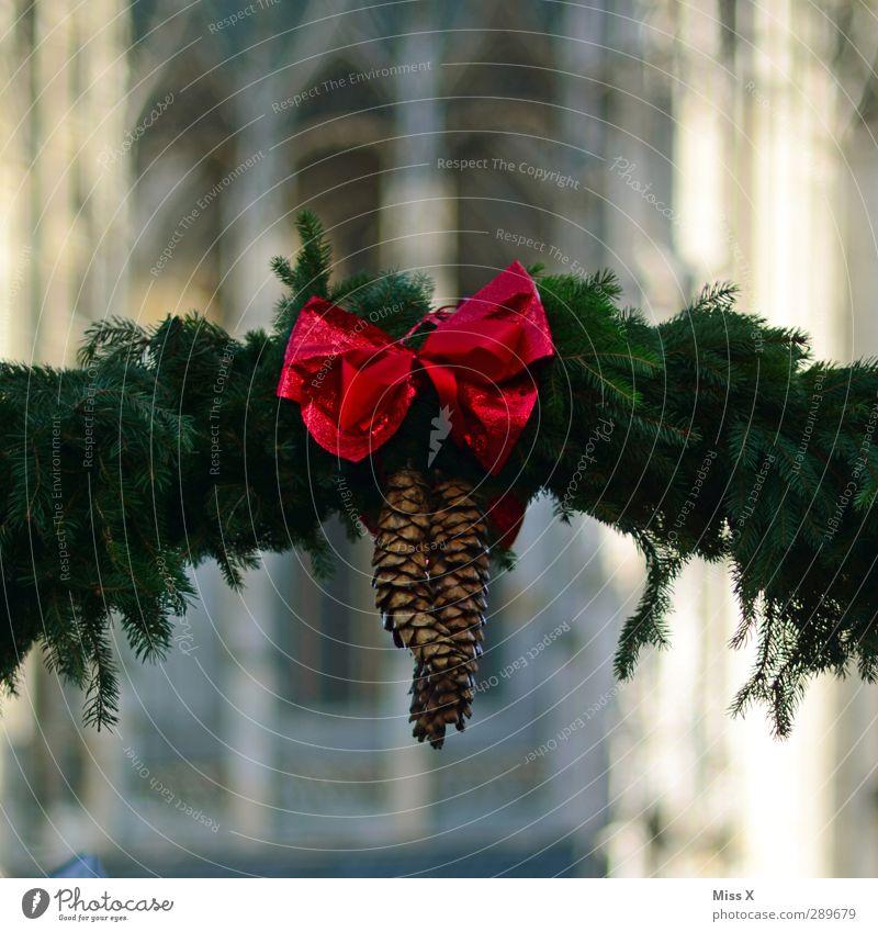 Weihnachtsmarkt Weihnachten & Advent rot Schleife Zapfen Girlande Tannenzweig Ulmer Münster Weihnachtsdekoration Dekoration & Verzierung Farbfoto mehrfarbig