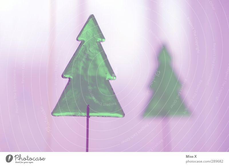 Tannenbaum Weihnachten & Advent grün Baum Winter Glas leuchten violett Weihnachtsbaum Tanne durchsichtig Weihnachtsdekoration