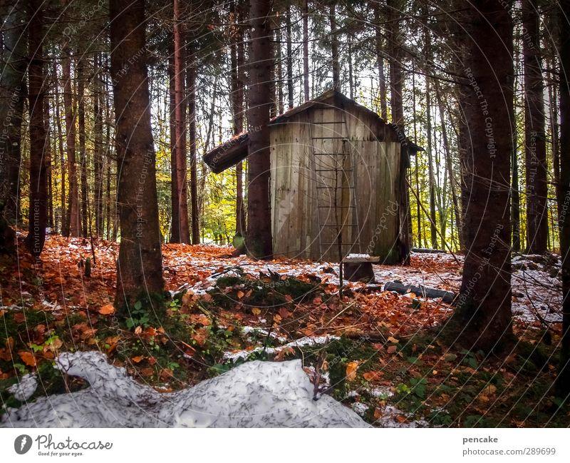 stall Landschaft Herbst Winter Eis Frost Schnee Baum Wald Oase Menschenleer Hütte Holz bescheiden Hoffnung Buchenblatt Tanne Fichte Leiter Stall Einsamkeit