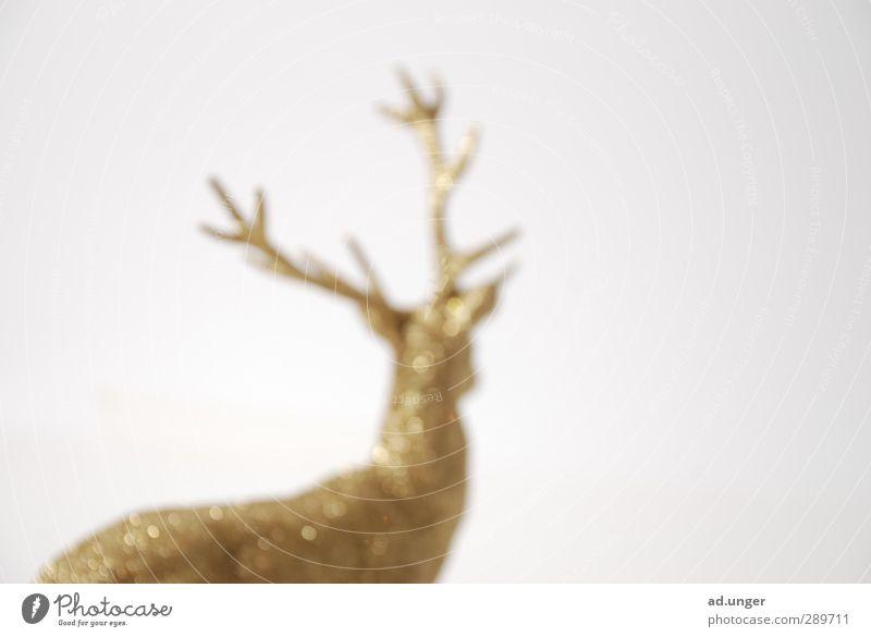 Goldtier Weihnachten & Advent Stofftiere glänzend trashig gold Kitsch Dekoration & Verzierung Rentier Weihnachtsdekoration falsch Farbfoto Studioaufnahme