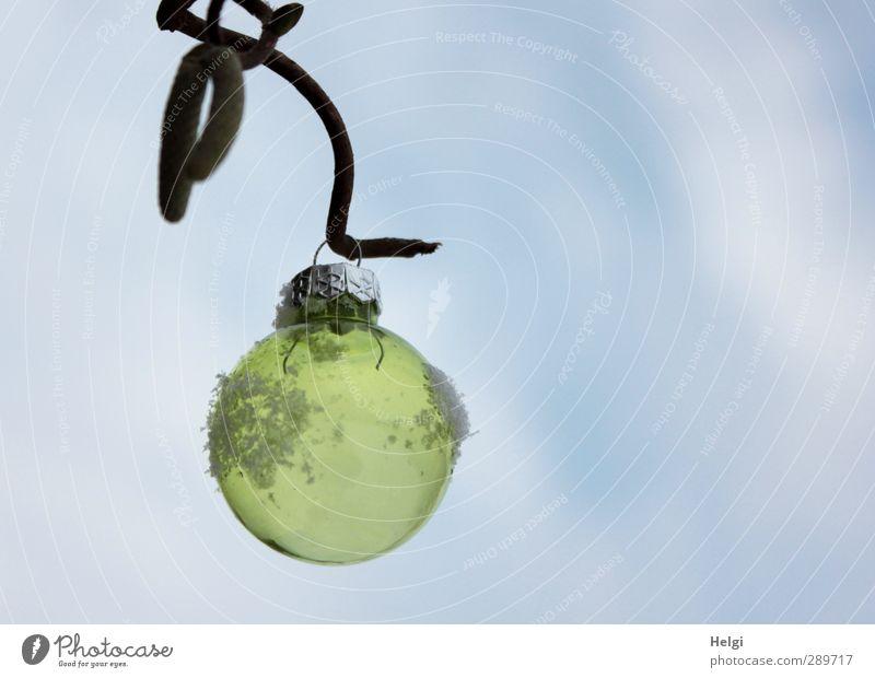 Frohe Weihnachten... Weihnachten & Advent Umwelt Natur Pflanze Himmel Winter Schnee Sträucher Zweig Garten Dekoration & Verzierung Christbaumkugel Glas Kugel
