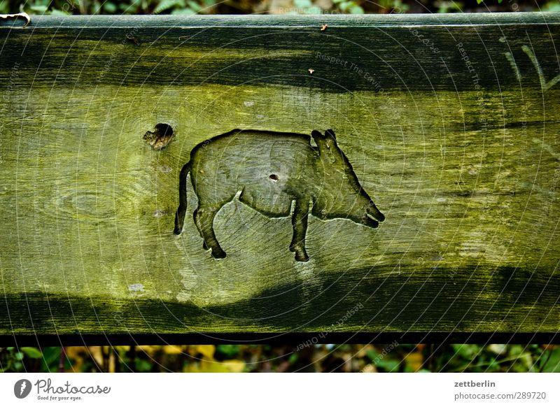Wild Freude Tier Herbst Holz Kunst Wildtier Jahreszeiten Bank Möbel Herbstlaub Oktober Schwein Sessellehne Relief Dinge Schnitzereien