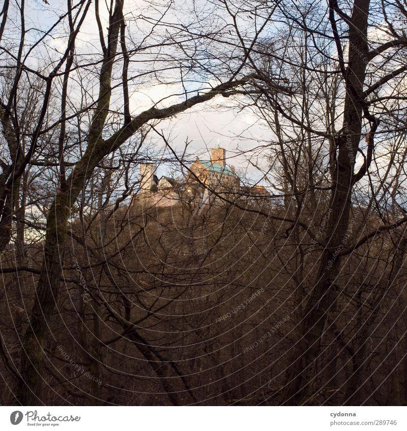 Wartburgblick Himmel Natur Ferien & Urlaub & Reisen Baum Einsamkeit Winter Landschaft Wald Umwelt Ferne Berge u. Gebirge Herbst Wege & Pfade Zeit wandern