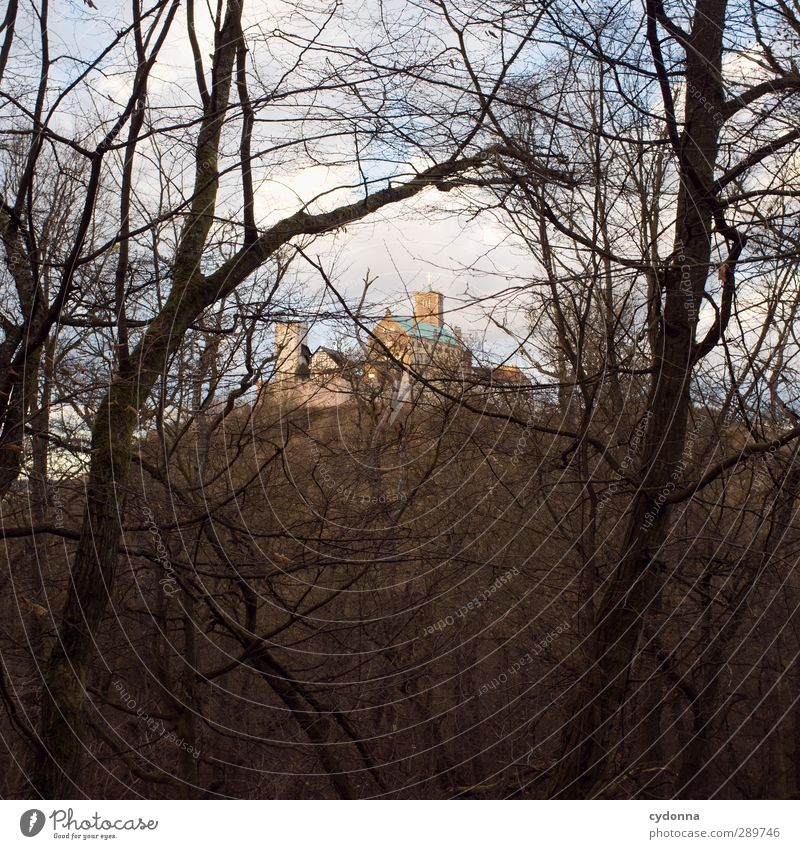 Wartburgblick Himmel Natur Ferien & Urlaub & Reisen Baum Einsamkeit Winter Landschaft Wald Umwelt Ferne Berge u. Gebirge Herbst Wege & Pfade Zeit wandern Tourismus