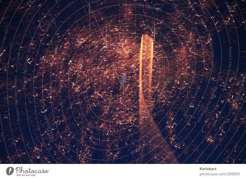 Circle Wolken Feste & Feiern Linie Kunst Regen Energiewirtschaft Design Beginn Technik & Technologie Streifen Silvester u. Neujahr Veranstaltung Feuerwerk
