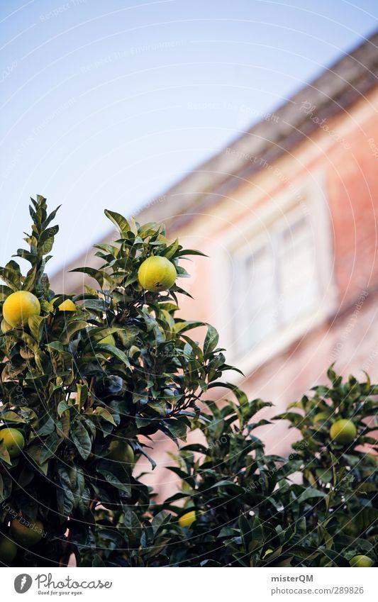 Nachbarsfrucht. Ferien & Urlaub & Reisen grün Haus Autofenster Garten Kunst ästhetisch ökologisch Zitrone mediterran Portugal Urlaubsfoto südländisch Urlaubsstimmung