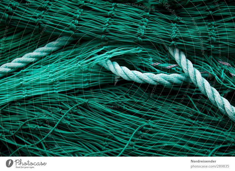 Grün Arbeit & Erwerbstätigkeit Beruf Netz grün Netzwerk Ordnung planen Fischereiwirtschaft Fischernetz Seil Hintergrundbild Strukturen & Formen Farbfoto