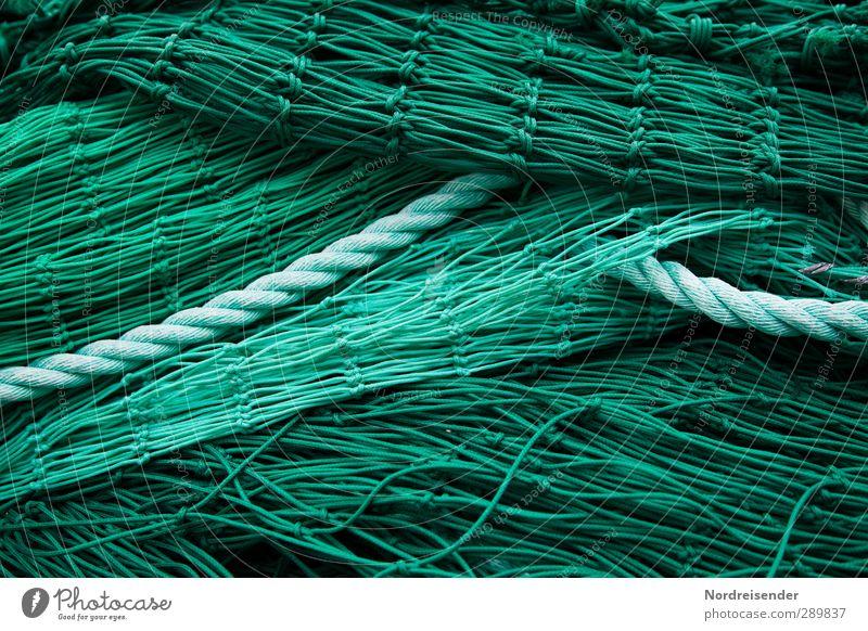 Grün Wirtschaft Netz Netzwerk grün komplex Ordnung Fischereiwirtschaft Fischernetz Fischgräte Seil Hintergrundbild Strukturen & Formen Farbfoto Außenaufnahme