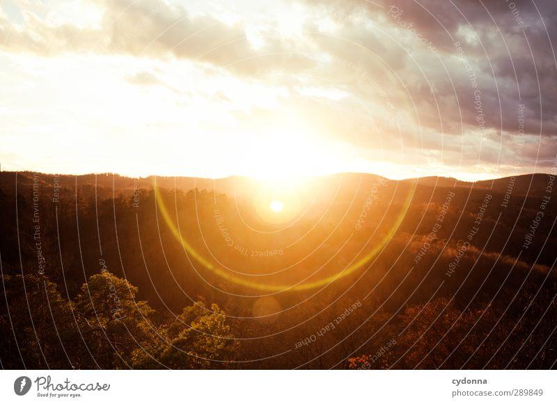 Verblendung Himmel Natur Sonne Erholung Landschaft ruhig Ferne Wald Berge u. Gebirge Umwelt Leben Herbst Freiheit Horizont träumen Idylle
