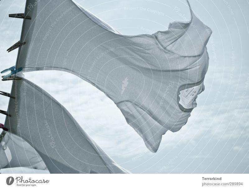 Hiddensee   wasch.tag Wäsche weiß T-Shirt Hemd Wäscheklammern Seil Wäscheleine Wind wehen Himmel Wolken blau rein frisch Duft Bewegung