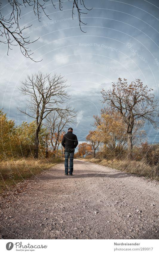 Irgendwann im September.... wandern Ruhestand Mensch Mann Erwachsene 1 Landschaft Herbst Pflanze Straße Wege & Pfade laufen Gefühle Akzeptanz Traurigkeit