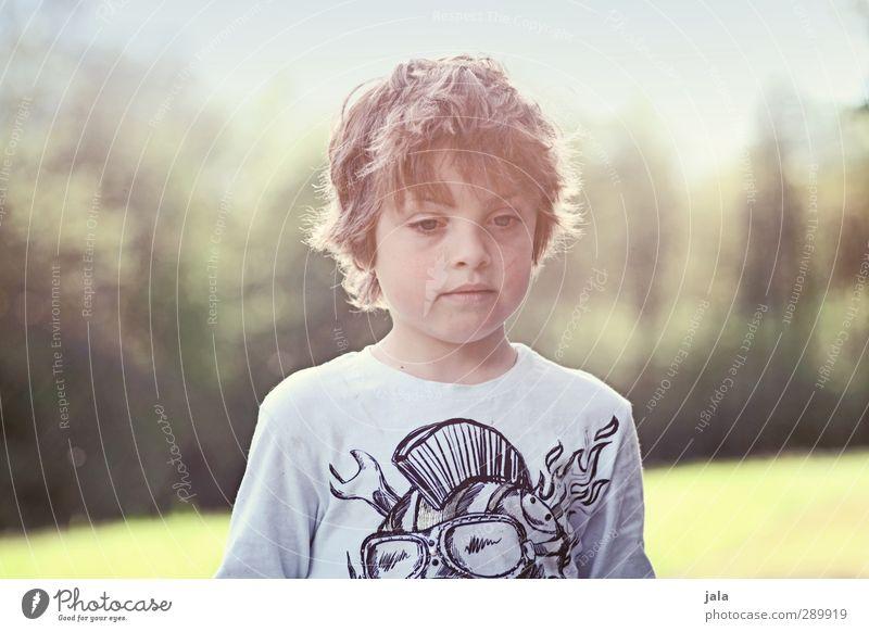 just a boy Mensch maskulin Junge Kindheit 1 3-8 Jahre Umwelt Natur Landschaft Sonne Herbst Pflanze Baum Wiese authentisch schön wild Farbfoto Außenaufnahme Tag