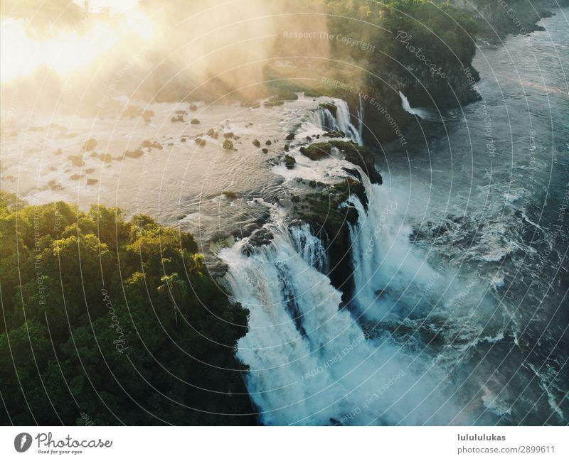 das ist ein wasserfall. Ferien & Urlaub & Reisen Tourismus Abenteuer Ferne Freiheit Umwelt Natur Wasser Wasserfall Iguazu Fälle frei stark Baum