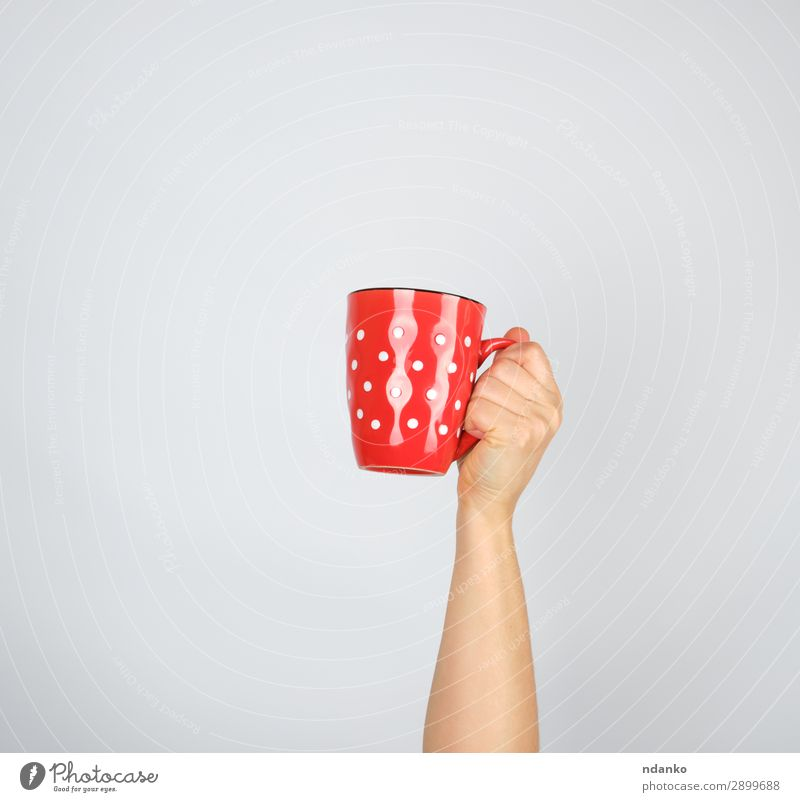 Frau weiß rot Hand Erwachsene braun Idee Kaffee Getränk festhalten Frühstück Tee Tasse Halt Becher Espresso