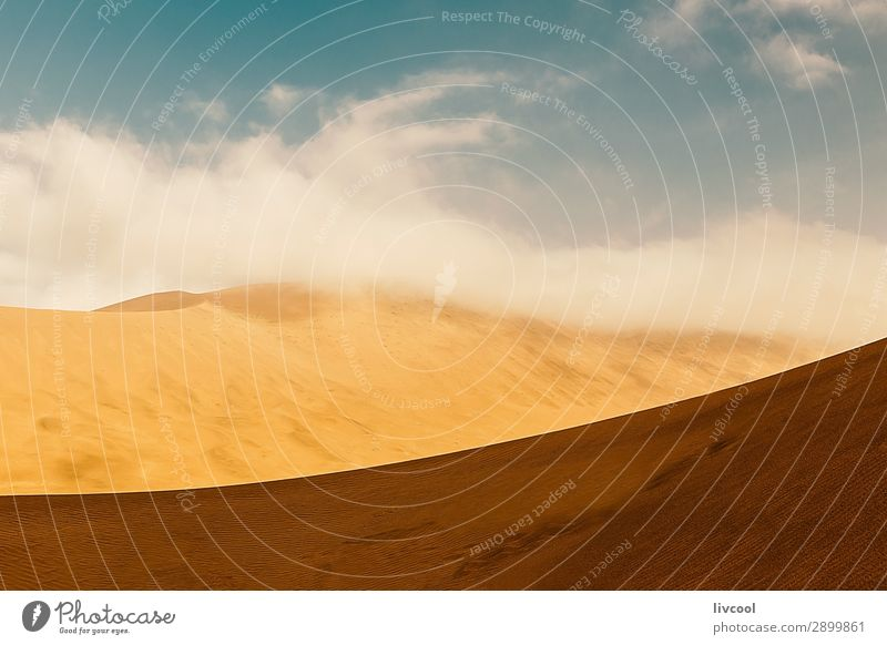 Wüstendünen II, China Erholung Landschaft Sand Himmel Wolken Park Einsamkeit Frieden Hotan wüst Tarim Xinjiang uigur Asien Taklimakan Wüste Karakax Yurungkash