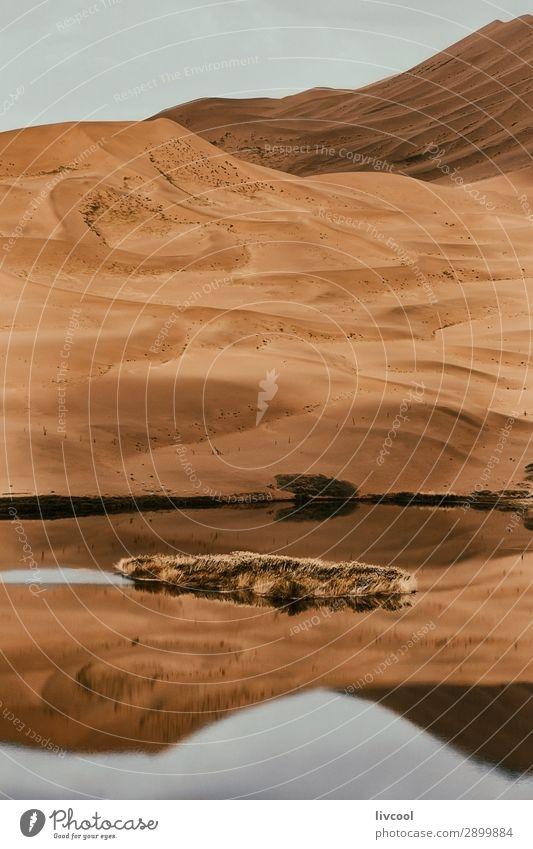 See in der Wüste Erholung Natur Landschaft Pflanze Urelemente Sand Himmel Wolken Baum Park Hügel Seeufer Ruine authentisch natürlich trocken braun gelb