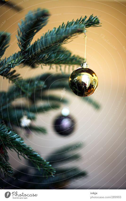 trash [weihnachtsbild] Häusliches Leben Weihnachten & Advent 1 Mensch Weihnachtsbaum Tanne Tannenzweig Dekoration & Verzierung Baumschmuck Kugel hängen gelb