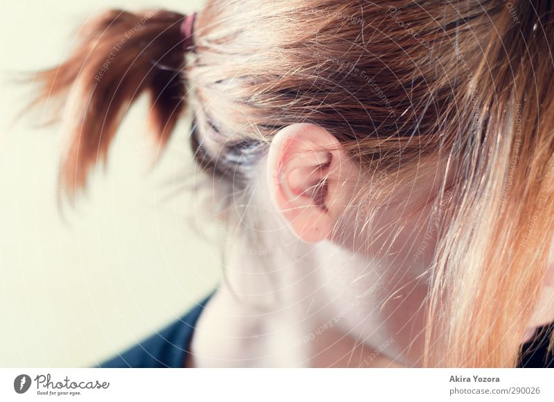 Ich hör dir zu. Mensch Kopf Ohr Vertrauen hören Wachsamkeit rothaarig