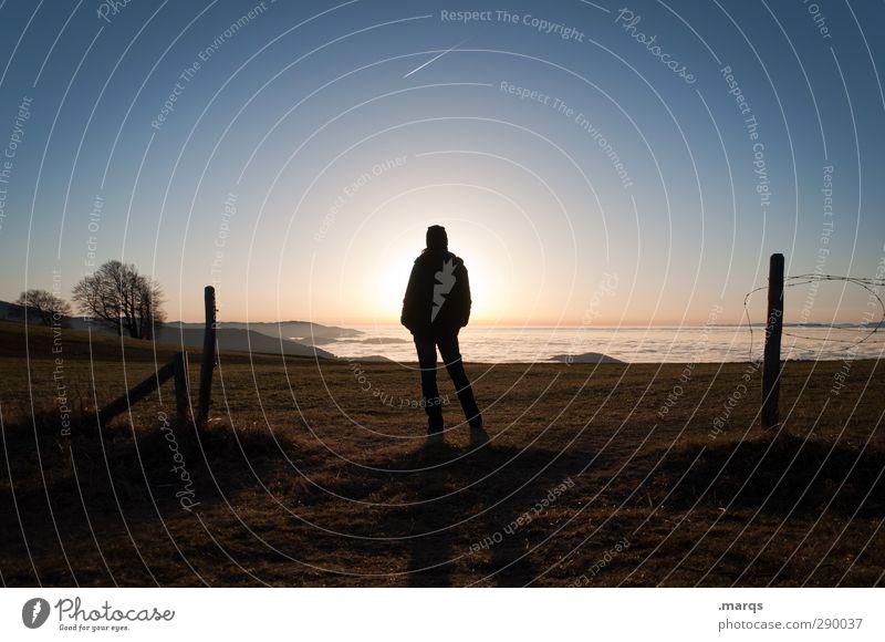 Auf ein Neues Ferne Freiheit Mensch Erwachsene 1 Natur Landschaft Wolkenloser Himmel Horizont Sonnenaufgang Sonnenuntergang Schönes Wetter Wiese Hügel stehen