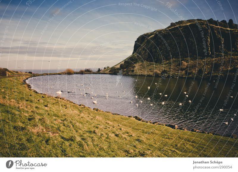 Teichbetrachtung I Himmel Natur ruhig Landschaft Umwelt Berge u. Gebirge Gras Traurigkeit Küste See wandern Idylle Seeufer Hügel fantastisch Ente