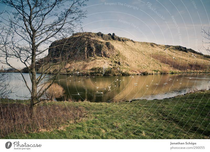 Teichbetrachtung II Himmel Natur Wasser Baum ruhig Landschaft Umwelt Berge u. Gebirge Gras Traurigkeit See wandern Idylle Seeufer Hügel fantastisch
