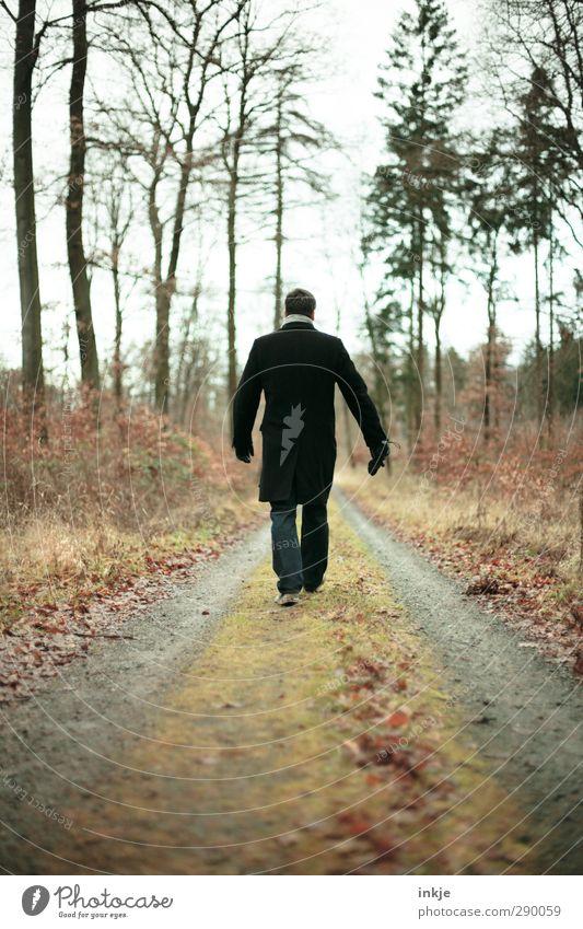 Spaziermarschieren Freizeit & Hobby Ferien & Urlaub & Reisen Ausflug Ferne Mensch Mann Erwachsene Leben Körper Rücken 1 30-45 Jahre Natur Horizont Herbst Winter