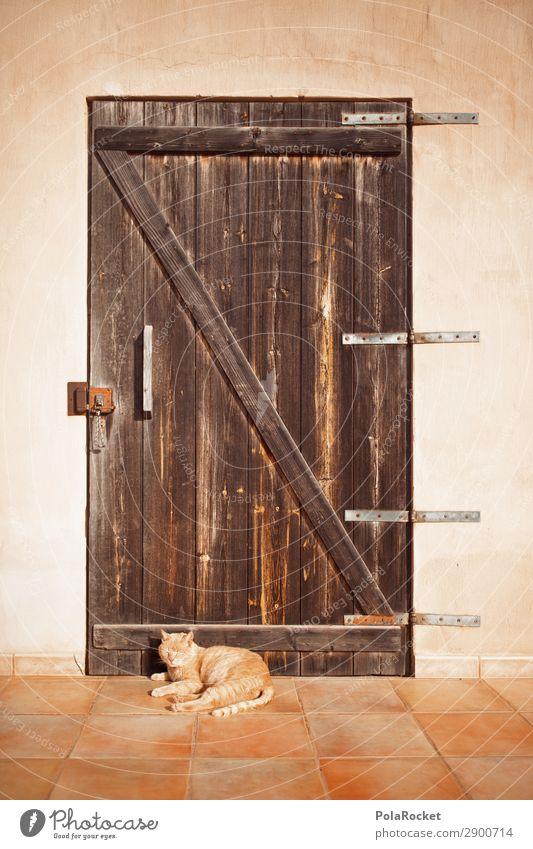 #A# chill out area Kunst ästhetisch Katze Tür Erholung Erholungsgebiet Idylle friedlich Eingangstür mediterran Farbfoto Gedeckte Farben Außenaufnahme