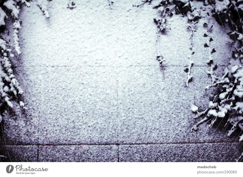 Freiraum schön Einsamkeit Umwelt Ferne kalt Wand Schnee Tod Gefühle Traurigkeit Mauer Stil Schneefall Klima Zufriedenheit elegant