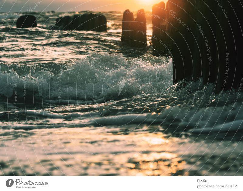 Wellen im Abendlicht Ferien & Urlaub & Reisen Ferne Freiheit Sommer Sommerurlaub Sonne Strand Meer Umwelt Natur Urelemente Wasser Sonnenaufgang Sonnenuntergang