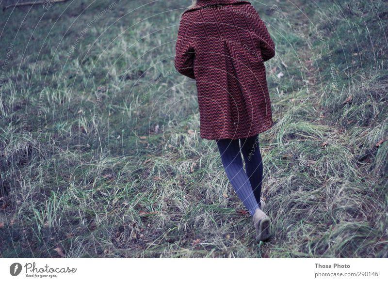 Rotkäppchen Körper wandern Junge Frau Jugendliche Beine 13-18 Jahre Kind 18-30 Jahre Erwachsene Umwelt Natur Herbst Winter Pflanze Baum Gras Wald Urwald