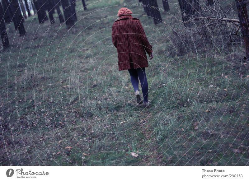 Allein im Wald feminin Junge Frau Jugendliche Körper Rücken Umwelt Natur Pflanze Baum Gras Moos Farn Dorf Bewegung gehen laufen wandern wild rot Wege & Pfade
