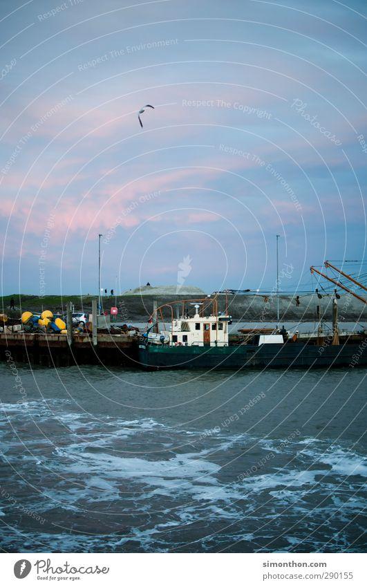 Hafen Himmel Ferien & Urlaub & Reisen Wasser Meer Wolken kalt Küste Vogel rosa Wetter Wind Insel Hamburg Güterverkehr & Logistik Nordsee