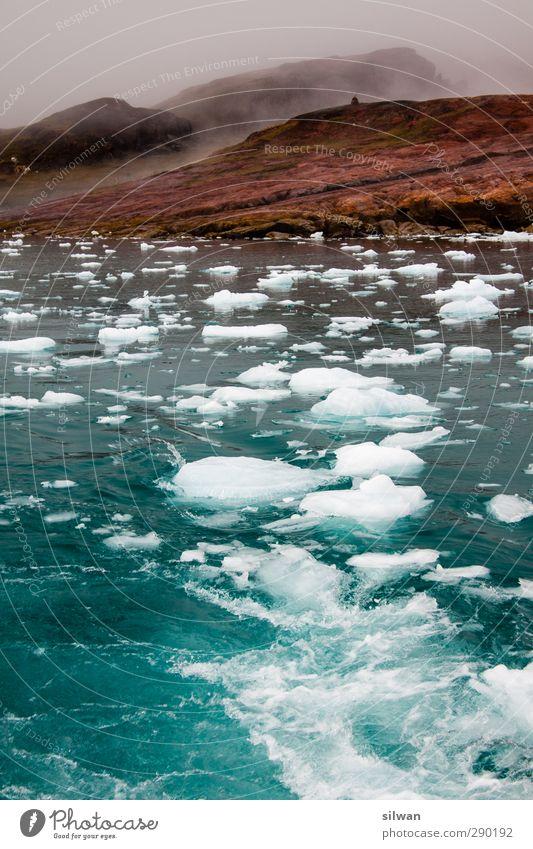 Green(ice)land Natur blau Wasser Meer ruhig Landschaft dunkel kalt Freiheit braun Eis Wellen Idylle Abenteuer Frost entdecken