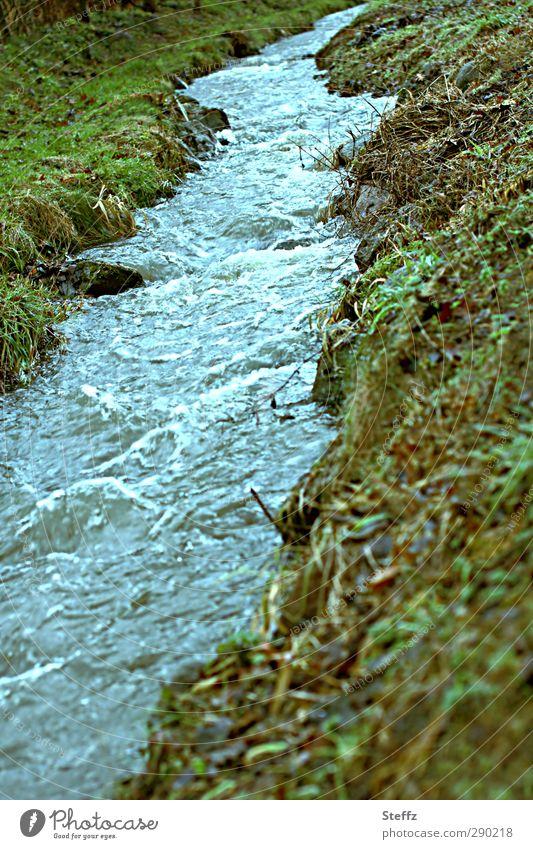 Das Rauschen des Wassers Bach Bachufer Strömung Geräusch fließen Dynamik strömen rauschendes Wasser fliessend Bewegungsenergie blau unruhig hellblau Urelemente