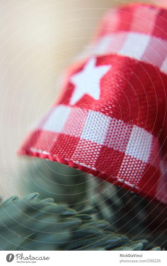 Weihnachtszeit Schleife Zeichen Linie Streifen Schnur elegant grün rot weiß Weihnachten & Advent Stern (Symbol) Tannenzweig Tannennadel Liebe