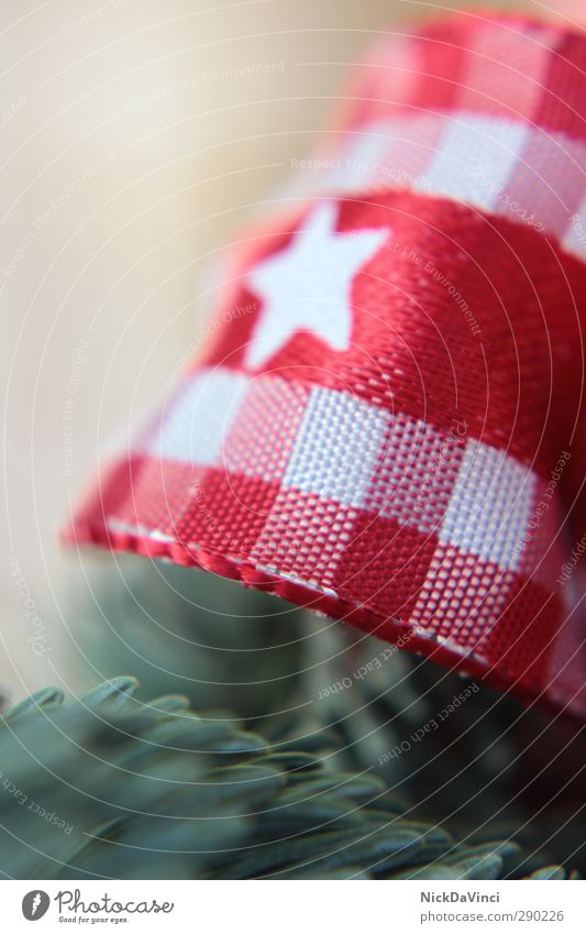 Weihnachtszeit Weihnachten & Advent grün weiß rot Liebe Linie Dekoration & Verzierung elegant Stern (Symbol) Zeichen Streifen Schnur festlich Schleife Tannennadel Tannenzweig