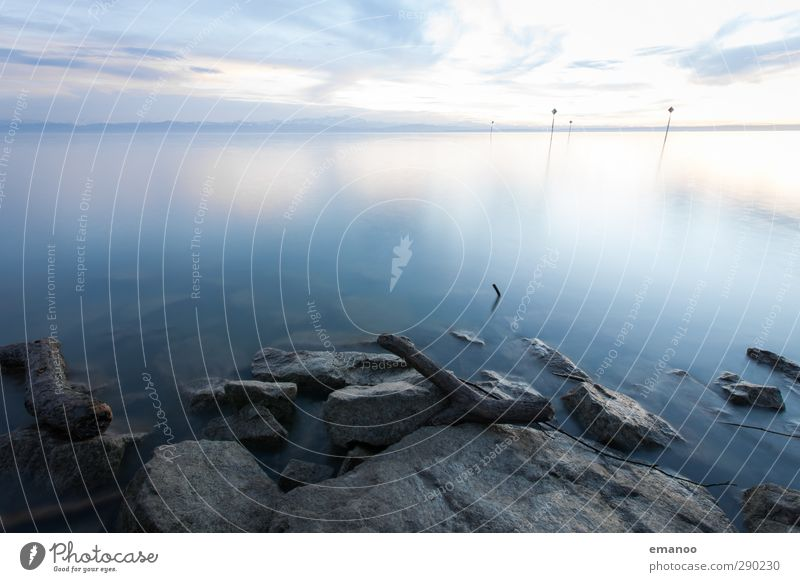Bodensee II Himmel Natur Wasser schön Einsamkeit Strand ruhig Landschaft Ferne kalt Holz grau Küste See Stein Horizont