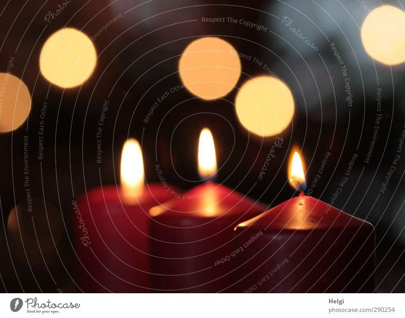 Licht... Weihnachten & Advent schön rot ruhig schwarz gelb Leben Feste & Feiern Stimmung Wohnung Zufriedenheit authentisch Ordnung leuchten stehen Häusliches Leben