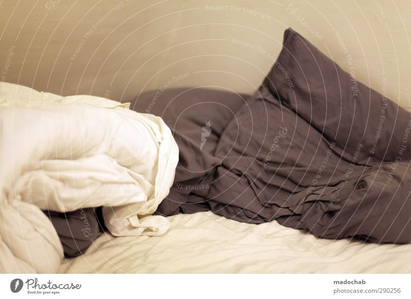 Aufbruch ruhig Erholung Innenarchitektur Gesundheit träumen Zusammensein Raum Zufriedenheit Lifestyle Häusliches Leben Warmherzigkeit Pause Bett Wellness