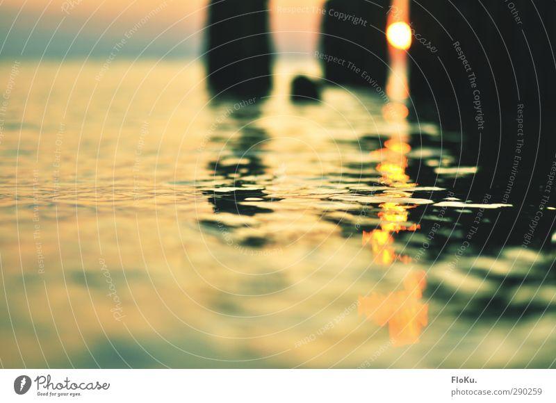 Stille Wasser Natur Ferien & Urlaub & Reisen grün Wasser Sommer Sonne Meer Strand ruhig gelb Umwelt Ferne Küste Stimmung orange gold