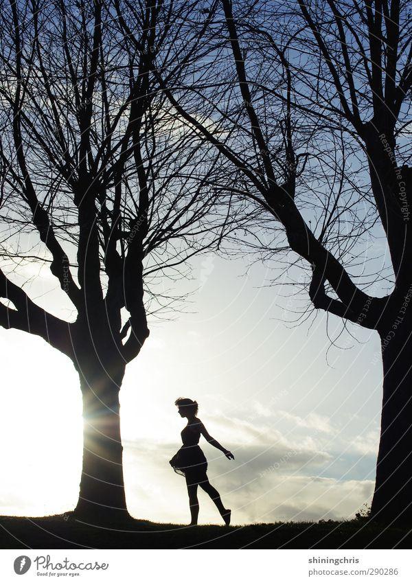 gegenwind Mensch Himmel Jugendliche blau weiß Baum Sonne Einsamkeit Winter ruhig Landschaft schwarz Erwachsene Junge Frau feminin Freiheit