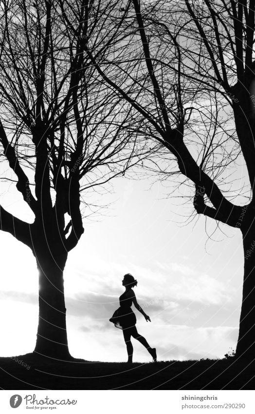 100 ! feminin Junge Frau Jugendliche Körper Mensch 18-30 Jahre Erwachsene Natur Landschaft Wolken Sonnenlicht Baum Kleid gehen laufen Tanzen frei Unendlichkeit