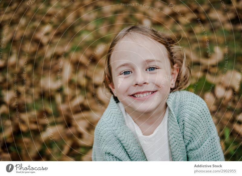 Lächelndes Mädchen zwischen den Wiesen mit trockenen Blättern Blatt regenarm Kind positiv Feld Natur schön Frau Kindheit Freiheit Park Fröhlichkeit Freude