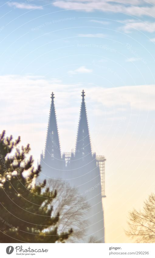 Noch im Nebel Köln Kölner Dom Kirche Bauwerk Gebäude Architektur Sehenswürdigkeit Wahrzeichen blau weiß hell hell-blau dunkel Baum Baumkrone Baugerüst Himmel