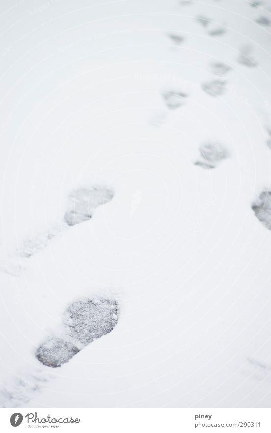 weiß Winter kalt Schnee grau Schneefall