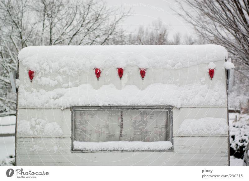 eingeschneit Winter Schnee Schneefall Baum Fahrzeug Anhänger kalt grau rot schwarz weiß Fenster zentriert Farbfoto Gedeckte Farben Außenaufnahme Menschenleer