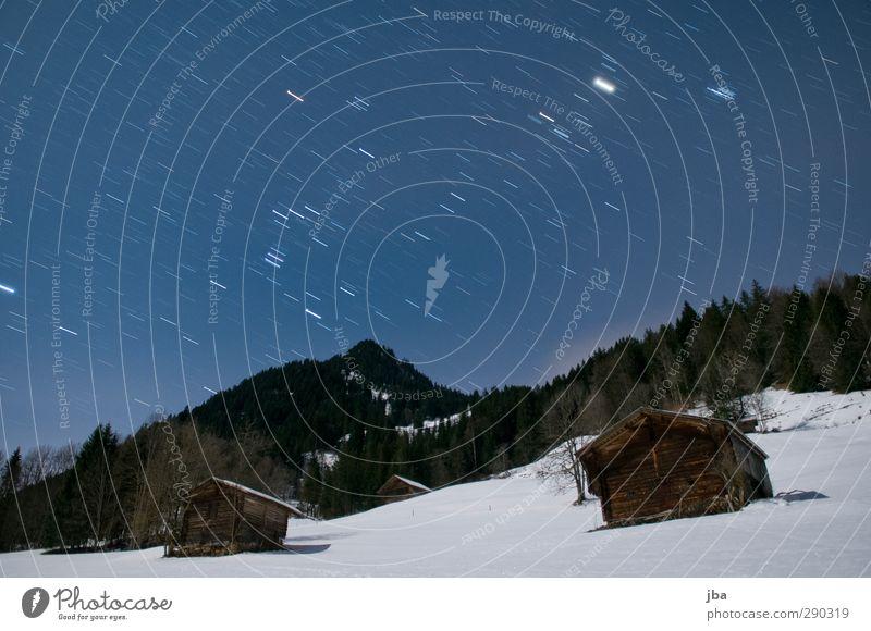 Silvesternacht Natur blau alt Winter ruhig Landschaft Erholung Wald Berge u. Gebirge Schnee Bewegung Freiheit authentisch stehen Schönes Wetter Stern