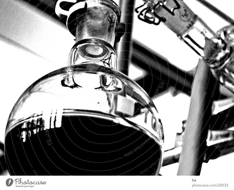 schnaps Experiment Labor Wissenschaften Rundkolben Chemie Versuch Glas Destillation