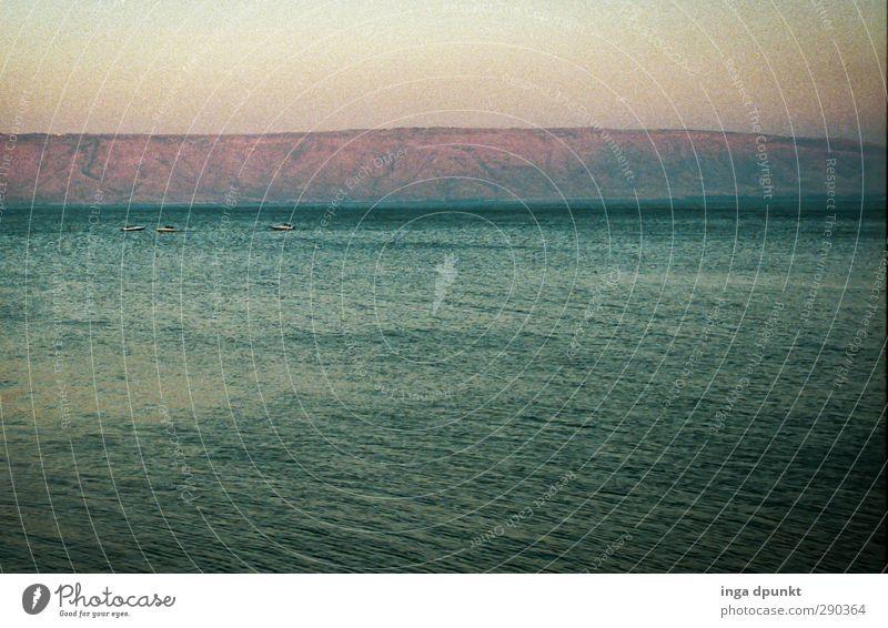 Stiller See Umwelt Natur Landschaft Urelemente Wasser Sonnenaufgang Sonnenuntergang Sonnenlicht Küste Seeufer Israel See Genezareth Galiläa