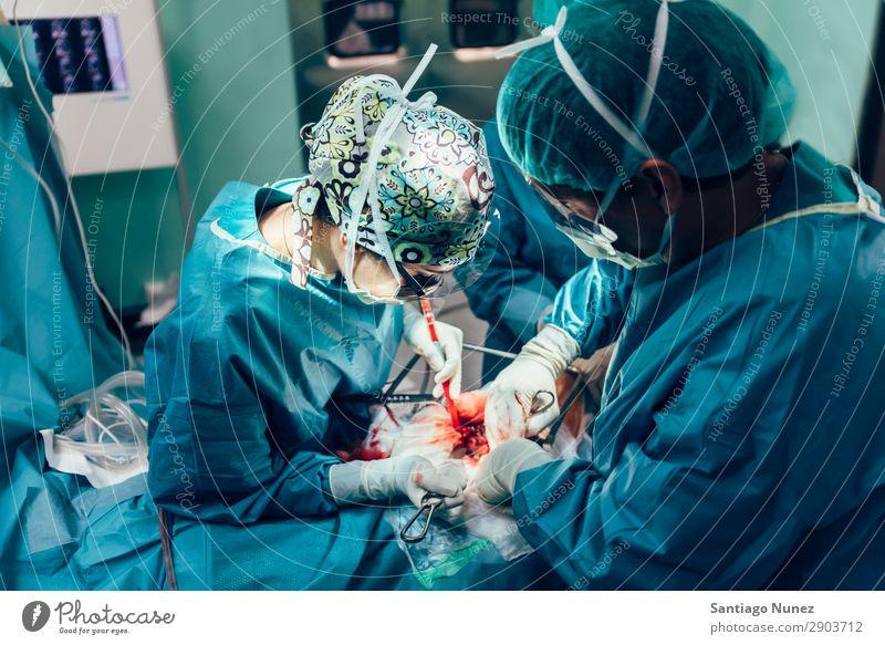 Team von operierenden Chirurgen. Operation Chirurgie in Betrieb befindlich chirurgisch Krankenhaus Raum Arzt Theater Medikament Arbeit & Erwerbstätigkeit